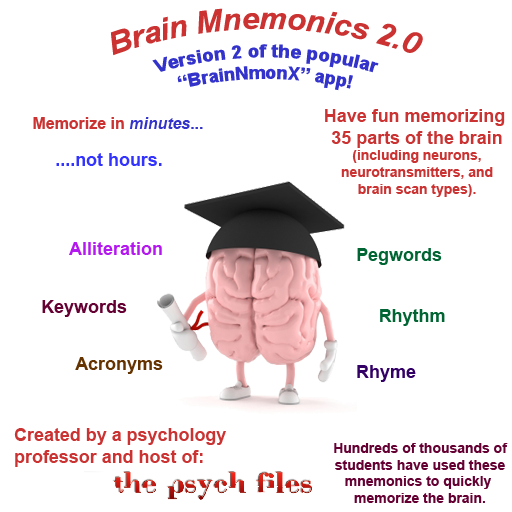 3 Main Basis of Memory | Remembering | Memory | Psychology
